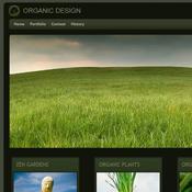 Organic Web Design. Шаблоны сайтов.
